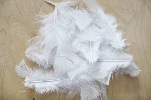 feathers 9