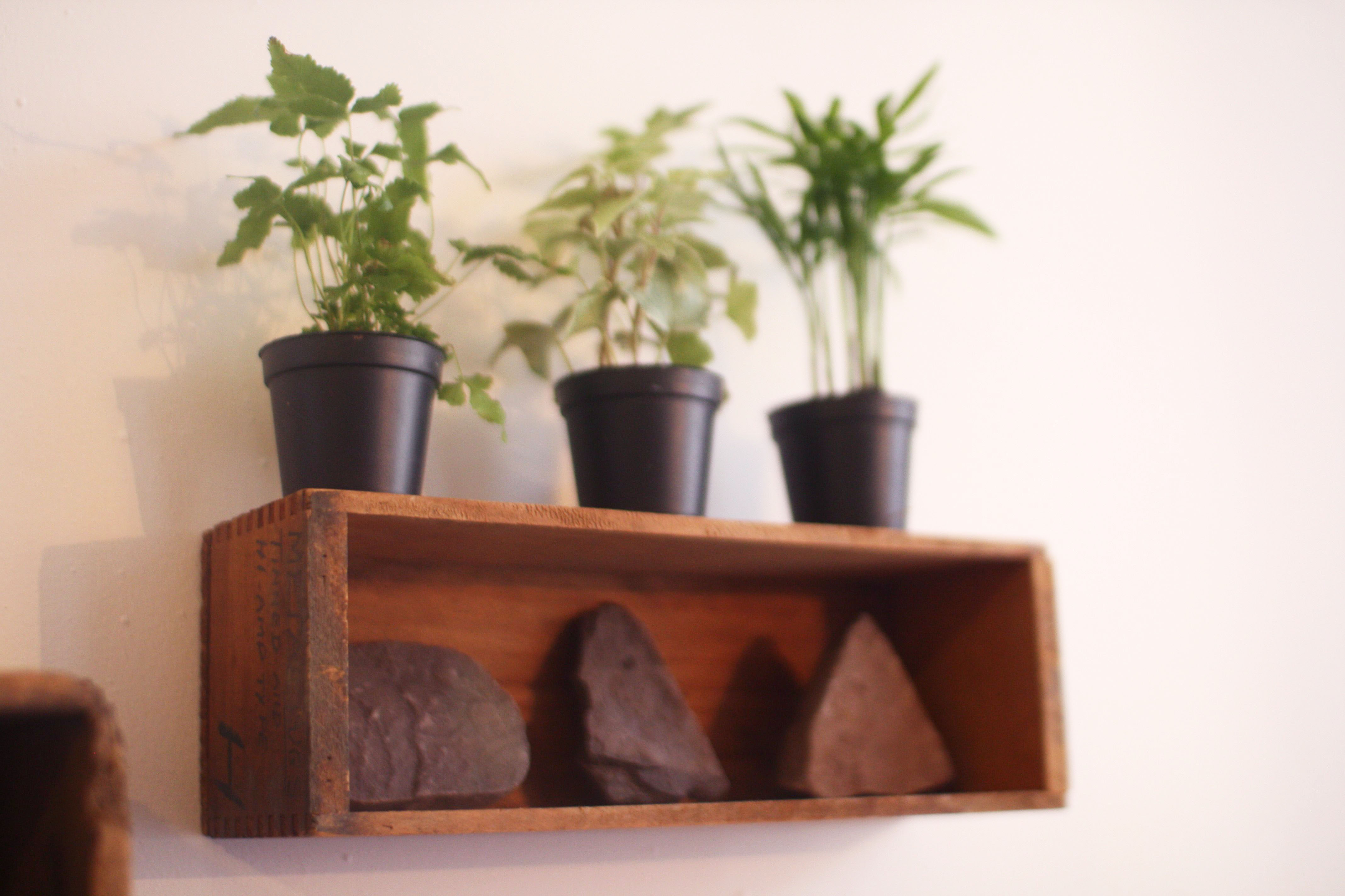 Pdf how to make wooden plant shelves plans diy free how to for Plant shelf plans