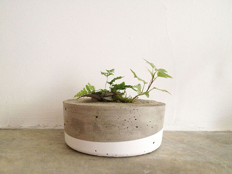 Make Concrete Planters Givemakewrap