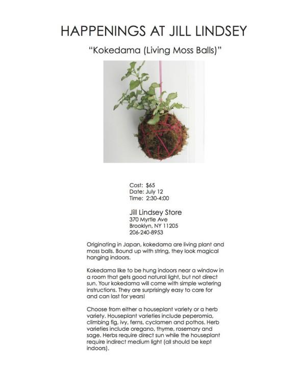 Moss_Ball_Workshop_1024x1024