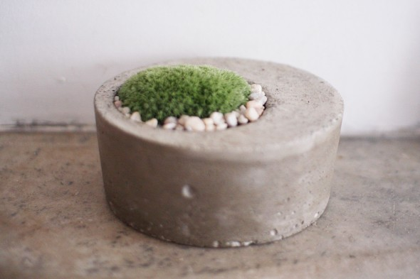 moss planter 2