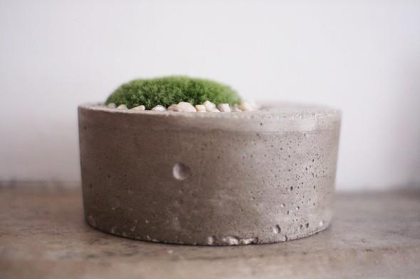 moss planter 3