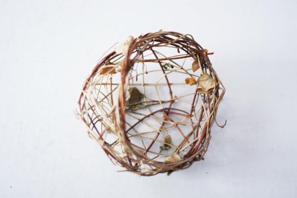 nest 4b